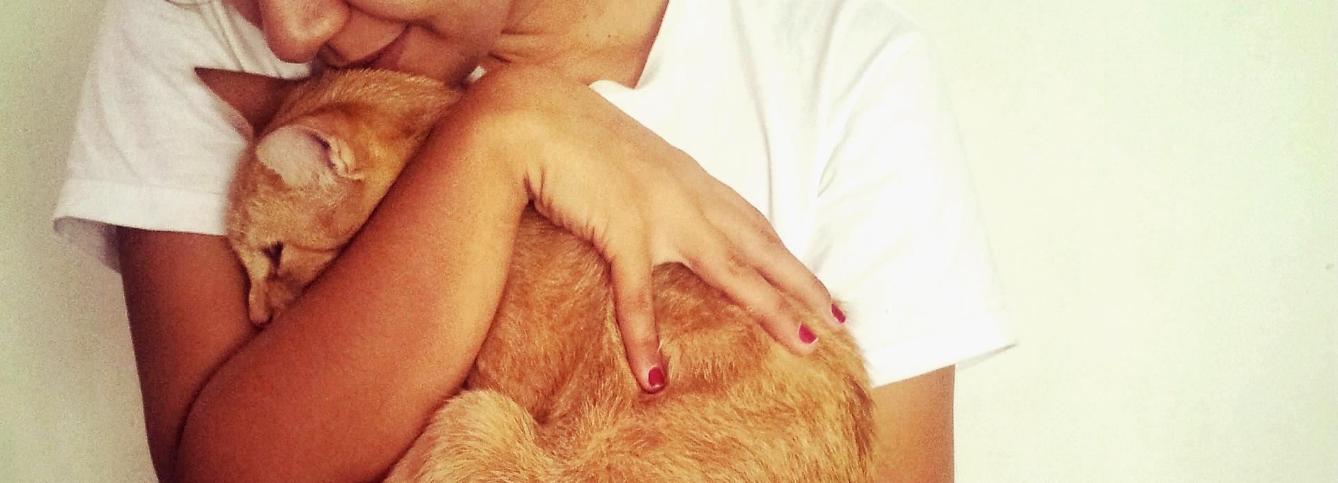 Benefits of Being a Cat Parent