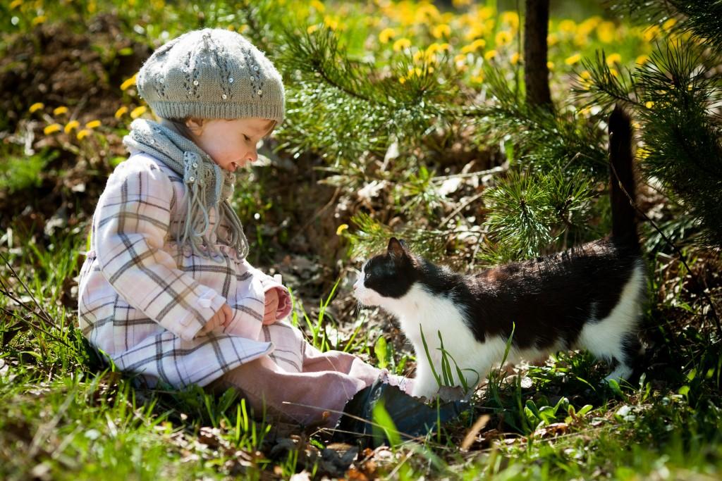 Cat_PlayDate_shutterstock_75914254