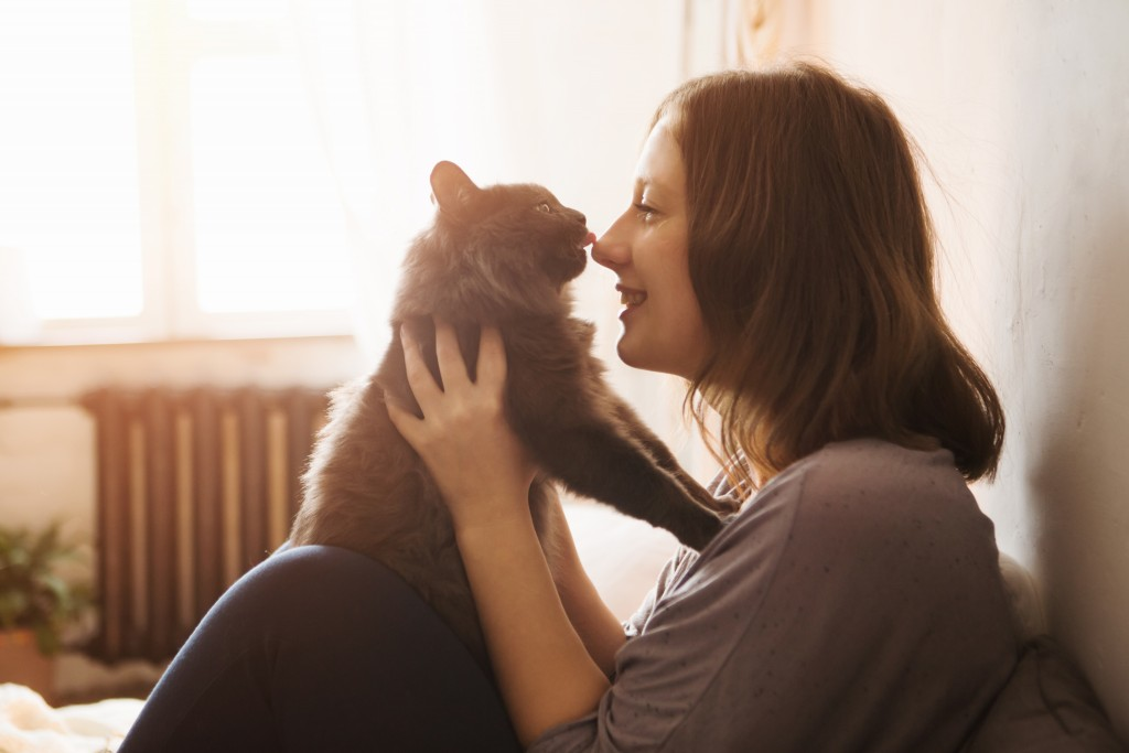Cat_QualityTime_shutterstock_744811618